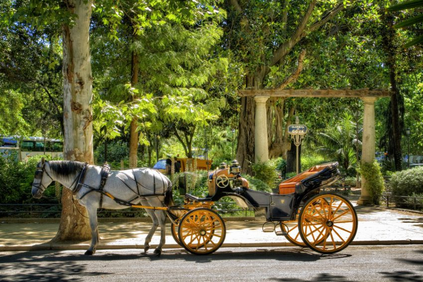 Maria Luisa Park by Horse and Carriage
