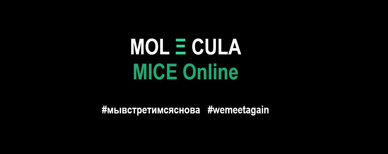 Вебинар MOLECULA MICE Online